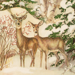 caspari_rare_card_-_two_deer_in_forest