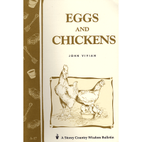 eggs-and-chickens-square