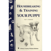 housebreaking-puppy-square
