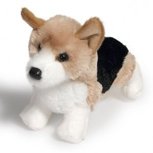 corgi-dogs-in-4-styles-jefferson-pup-shorty-4017-square_1073316240