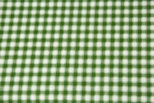 childs-garden-of-verses-fabric-green-gingham-1323-03