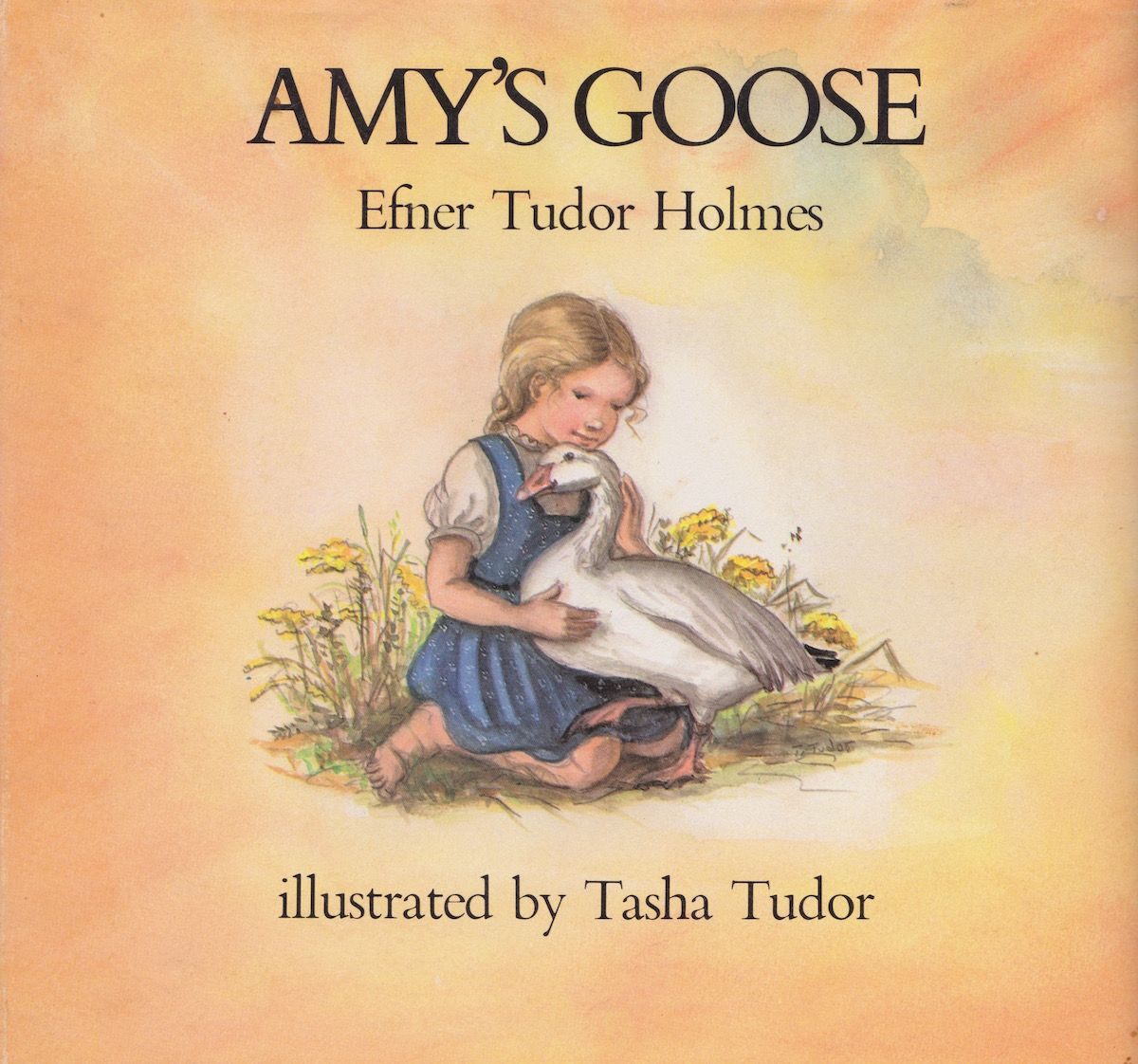 Amys-goose-cover